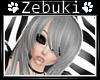 +Z+ Canva Grey ~