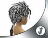 -JCP- B & W Reno Hair