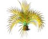 Multicolour Plant