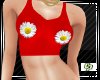 *cp*Summer Daisies Top