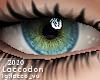 Eyes 14 M/F