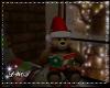D- A  Christmas Bear