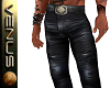 ~V~Harley Leathers