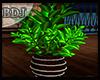 (J) Plant Getaway