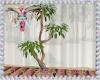 Boho Plant 2