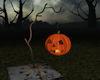 !Halloween Pumpkin Light