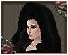 Kasandra's Hood
