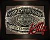 HB Harley Davidson Art 8