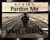 *Staind-Pardon Me