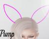 Neon Bunny ears