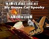 My Houde Cat Spooky