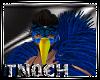 [T] Samba Mask