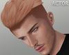 $ Ayton Ginger