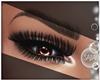 S! Chocolate Eye Flash²