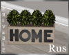 Rus: DERIV Home Planter