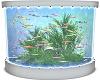 West  Fish Tank