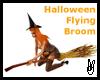 159 FLYING Broom