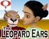 Leopard Ears -Female