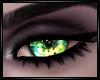 Commision Eyes