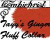 Tayy's GingerFluffCollar