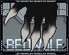 [B] Anyskin Paw