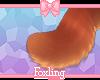 🎀 Lady tail 5