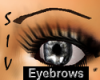 !Thin Drk Brown Eyebrows