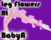 ! BA Pink Ghost Roses R