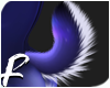 MIDNIGHT - Tail 6