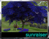 !SR! Blue  Tree& Swing