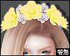害羞.  Yellow Crown