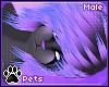 [Pets] Kia | hair v4