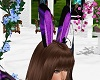 PurplePassion Bunny Ears