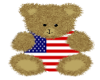 USA Teddy