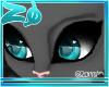 Tibby | Eyes <
