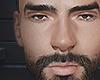 Ernesto brows/beard