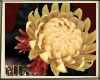 ML Chunhua Flower