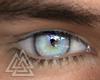 ◮ Ice Eyes  f/mesh