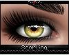 s  June Eyes {Feline}