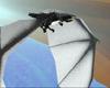 Mystic Dragon Flight