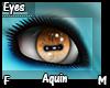 Aquin Eyes