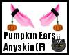Anyskin Pumpkin Ears (F)