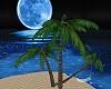 BEACH ZEN AND POSES