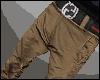 [B] B. Brown Pants