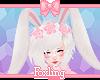 🎀 Bunny ears ghost