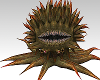 Animated Creature Groail