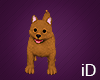 iD: Puppy