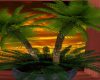 *FM* Palm Trees / In Pot