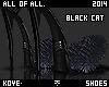 Black Cat Fur