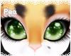 P! Ginger Eyes